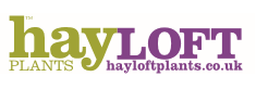 hayloft-logo
